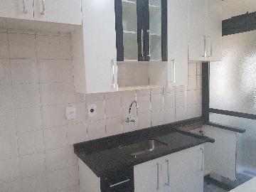 Alugar Apartamento / Apartamento em Osasco apenas R$ 1.000,00 - Foto 4