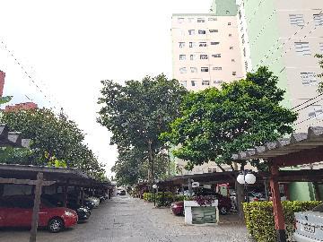 Alugar Apartamento / Apartamento em Osasco apenas R$ 850,00 - Foto 4