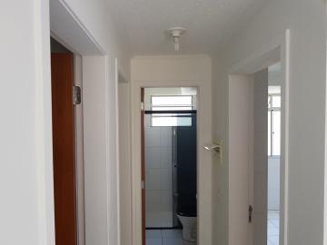 Alugar Apartamento / Padrão em Osasco R$ 600,00 - Foto 16