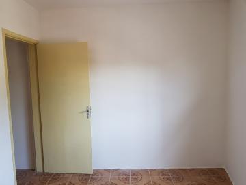 Alugar Casa / Sobrado em São Paulo R$ 1.500,00 - Foto 11