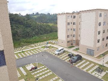 Alugar Apartamento / Apartamento em Cotia apenas R$ 790,00 - Foto 8