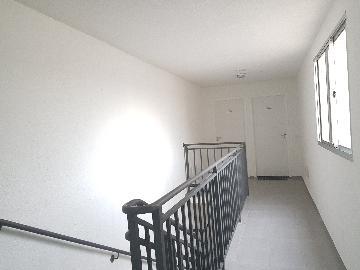 Alugar Apartamento / Apartamento em Cotia apenas R$ 790,00 - Foto 19