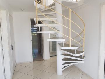 Apartamento / Cobertura Duplex em Osasco Alugar por R$1.000,00