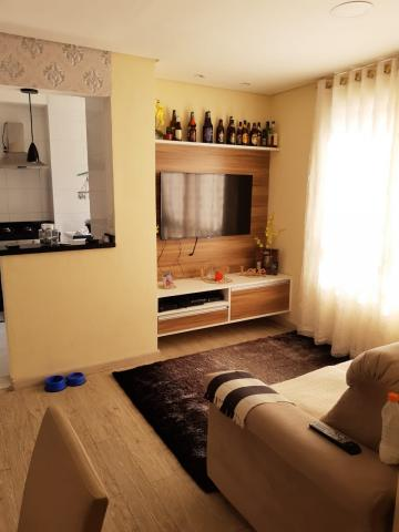 Apartamento / Padrão em Barueri