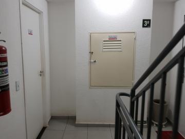 Alugar Apartamento / Padrão em São Paulo. apenas R$ 850,00