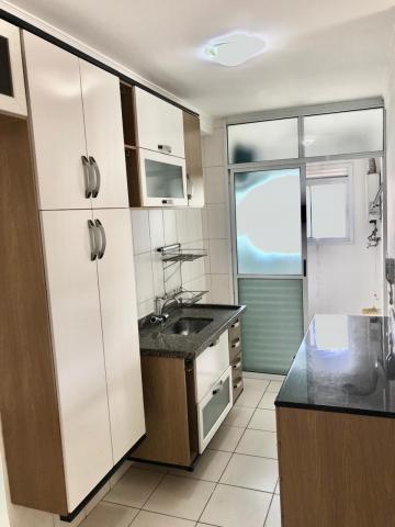 Sao Paulo Jaguare Apartamento Locacao R$ 2.400,00 Condominio R$816,72 3 Dormitorios 2 Vagas