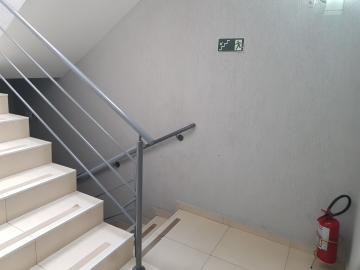 Alugar Apartamento / Padrão em São Paulo R$ 1.500,00 - Foto 24