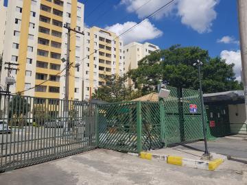 Alugar Apartamento / Padrão em São Paulo R$ 1.800,00 - Foto 20