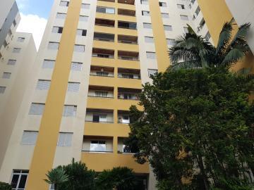 Alugar Apartamento / Padrão em São Paulo. apenas R$ 1.300,00