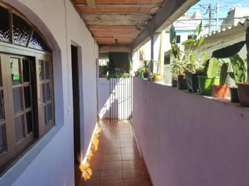 Alugar Casa / Terrea em Osasco R$ 750,00 - Foto 3