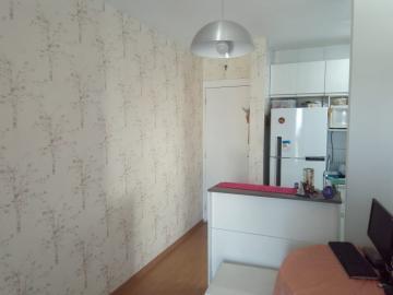 Alugar Apartamento / Padrão em Cotia. apenas R$ 270.000,00